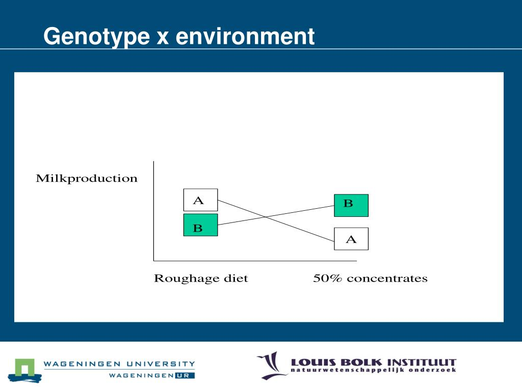 Genotype x environment
