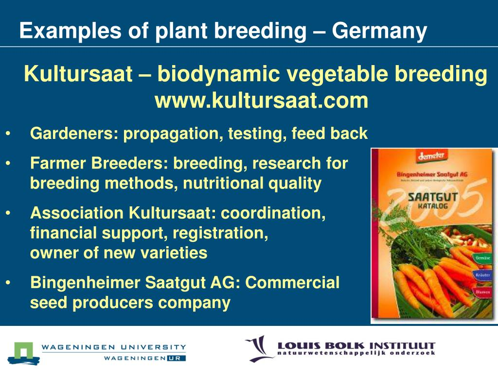 Examples of plant breeding – Germany