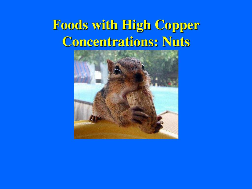 Foods with High Copper Concentrations: Nuts