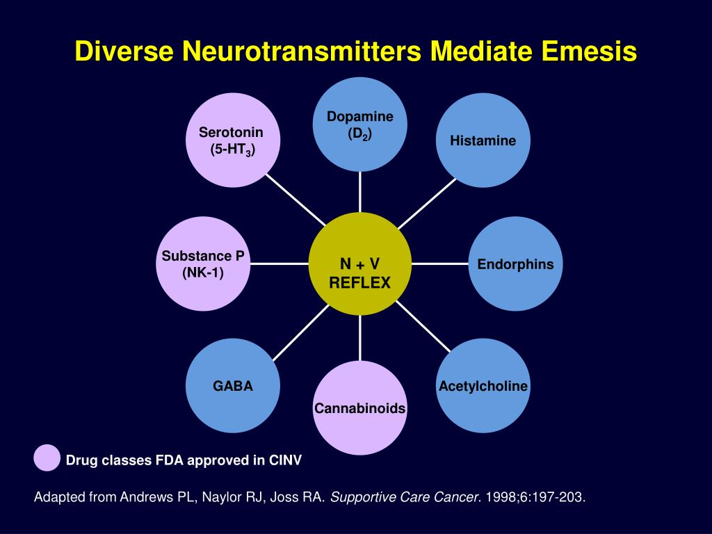 Diverse Neurotransmitters Mediate Emesis
