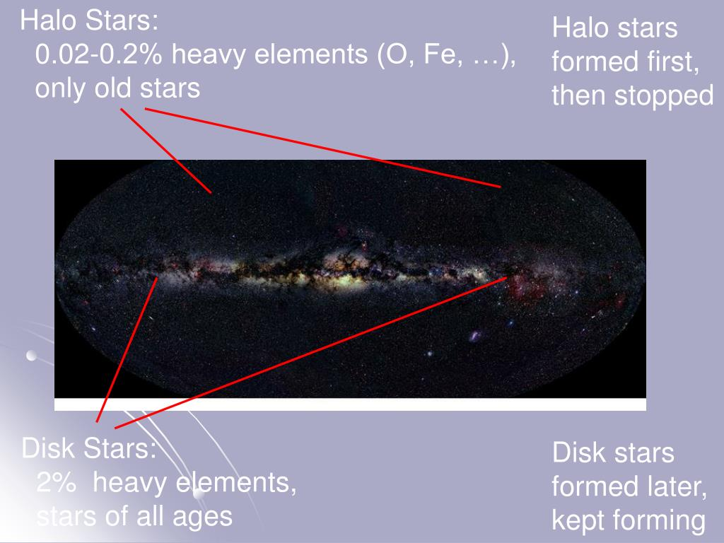 Halo Stars:
