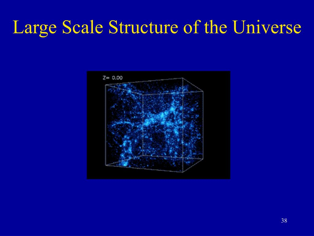 Large Scale Structure of the Universe