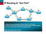 ip routing the fish