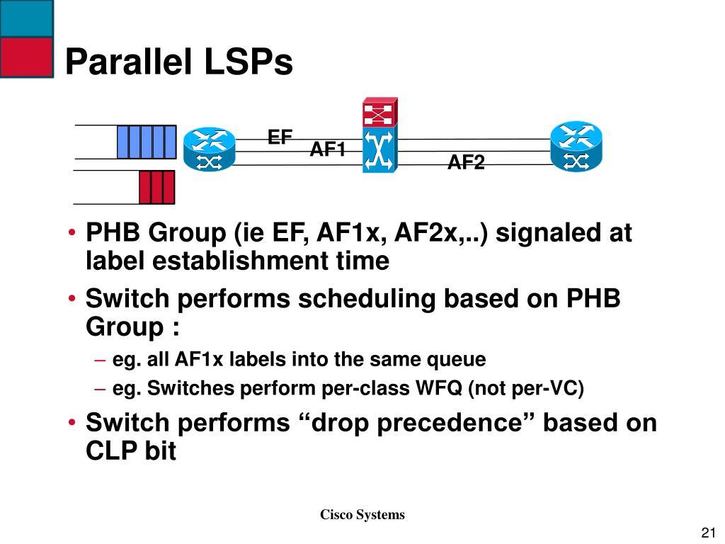 Parallel LSPs