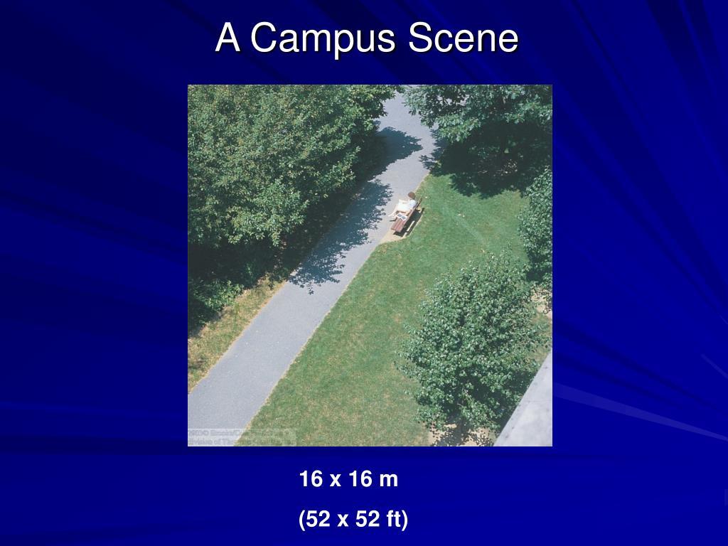 A Campus Scene