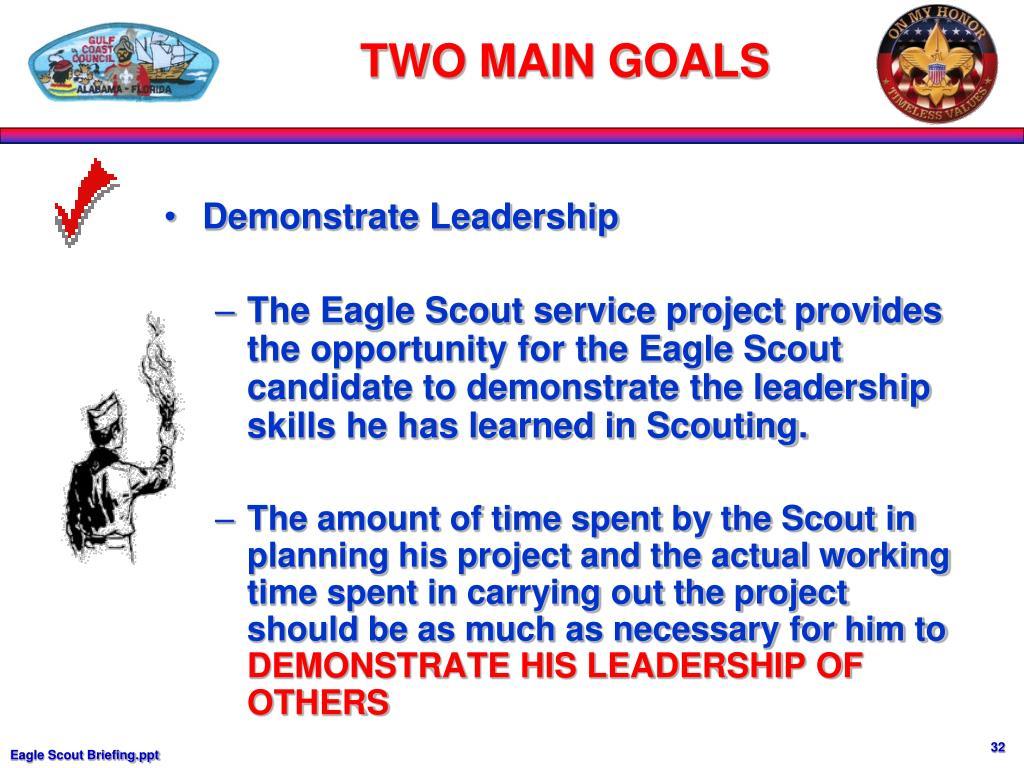 Demonstrate Leadership