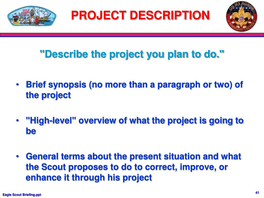 """""""Describe the project you plan to do."""""""