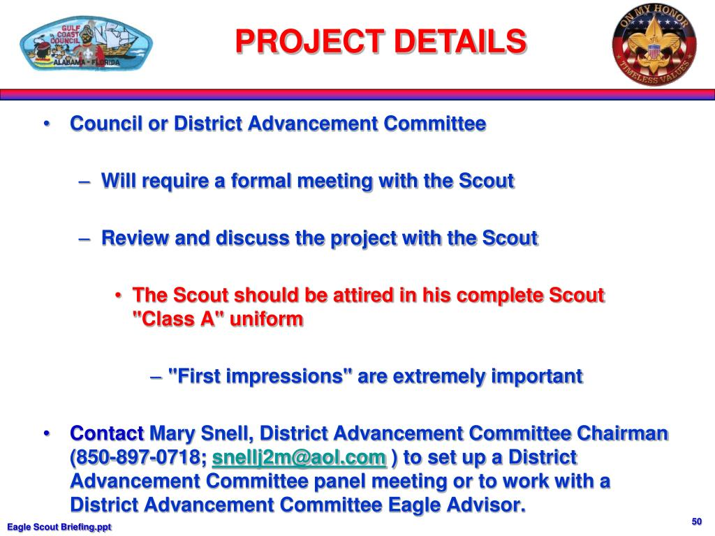 Council or District Advancement Committee