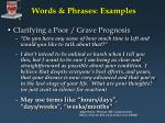words phrases examples38