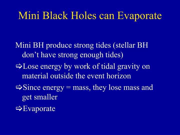 Mini Black Holes can Evaporate