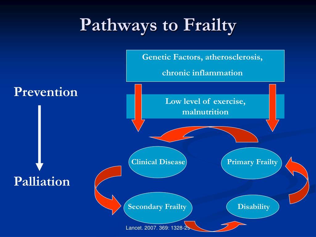 Pathways to Frailty