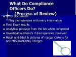 what do compliance officers do process of review