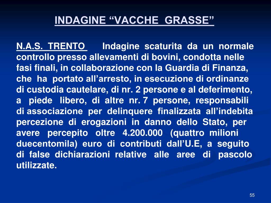 """INDAGINE """"VACCHE  GRASSE"""""""