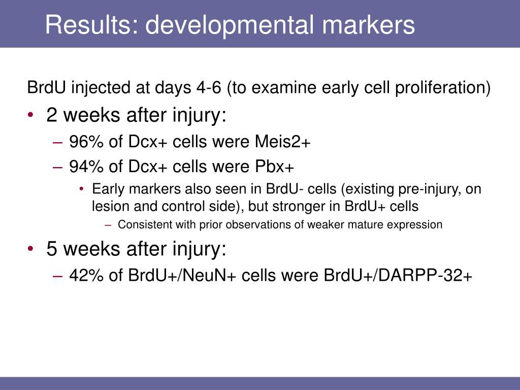 Results: developmental markers