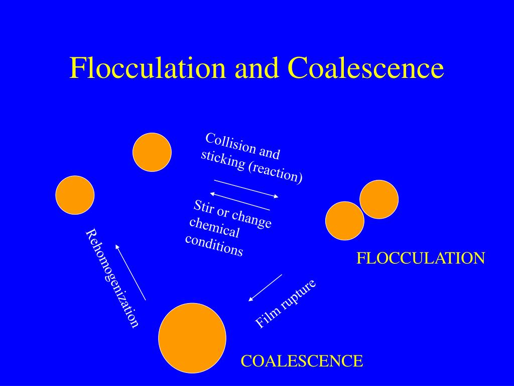 Flocculation and Coalescence