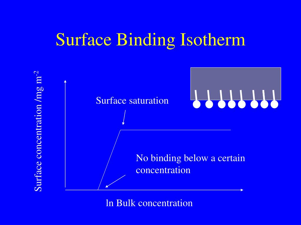 Surface Binding Isotherm