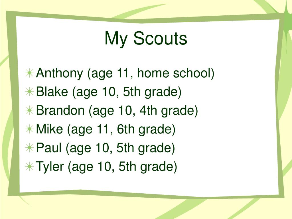 My Scouts