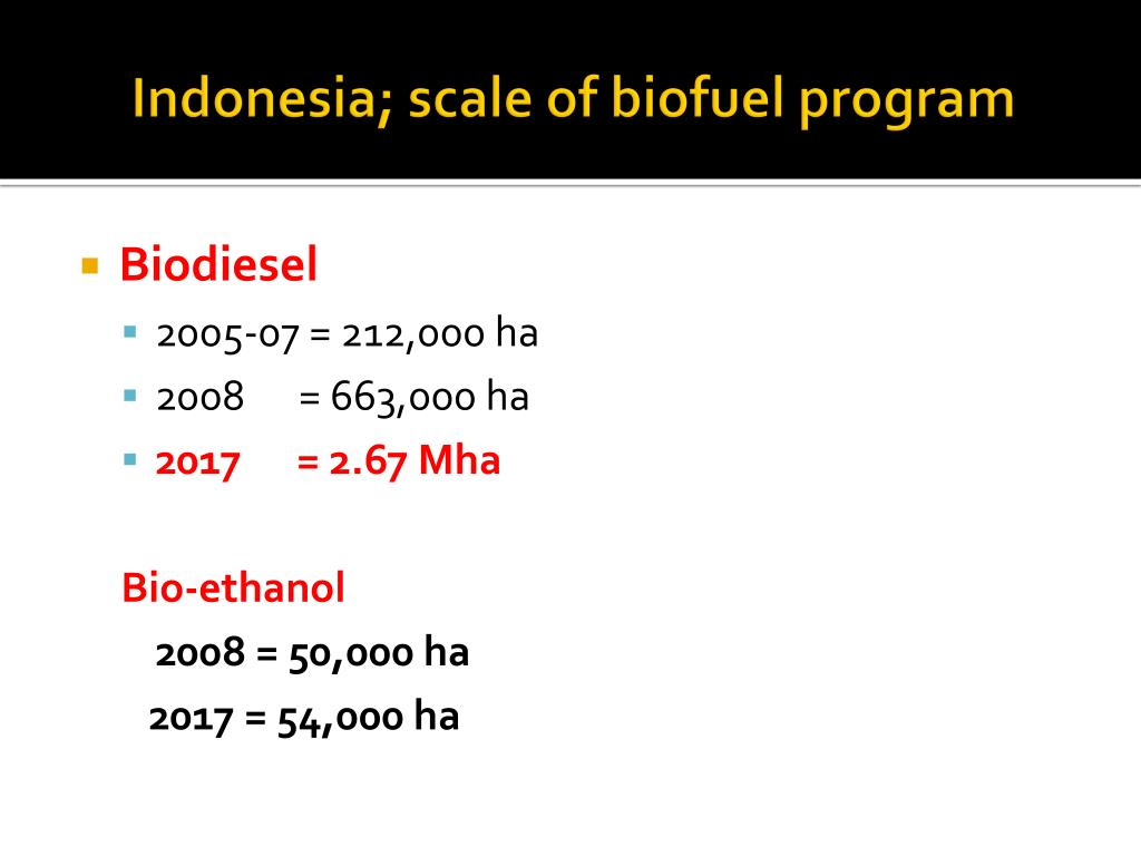 Indonesia; scale of biofuel program