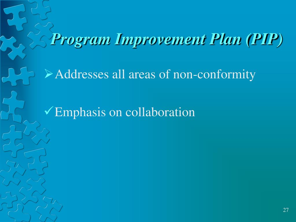 Program Improvement Plan (PIP)