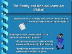 the family and medical leave act fmla15