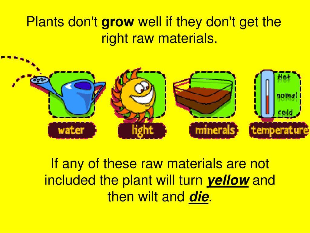 Plants don't