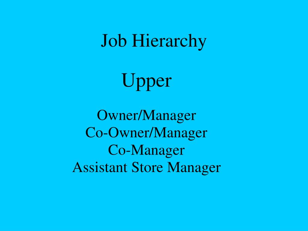 Job Hierarchy