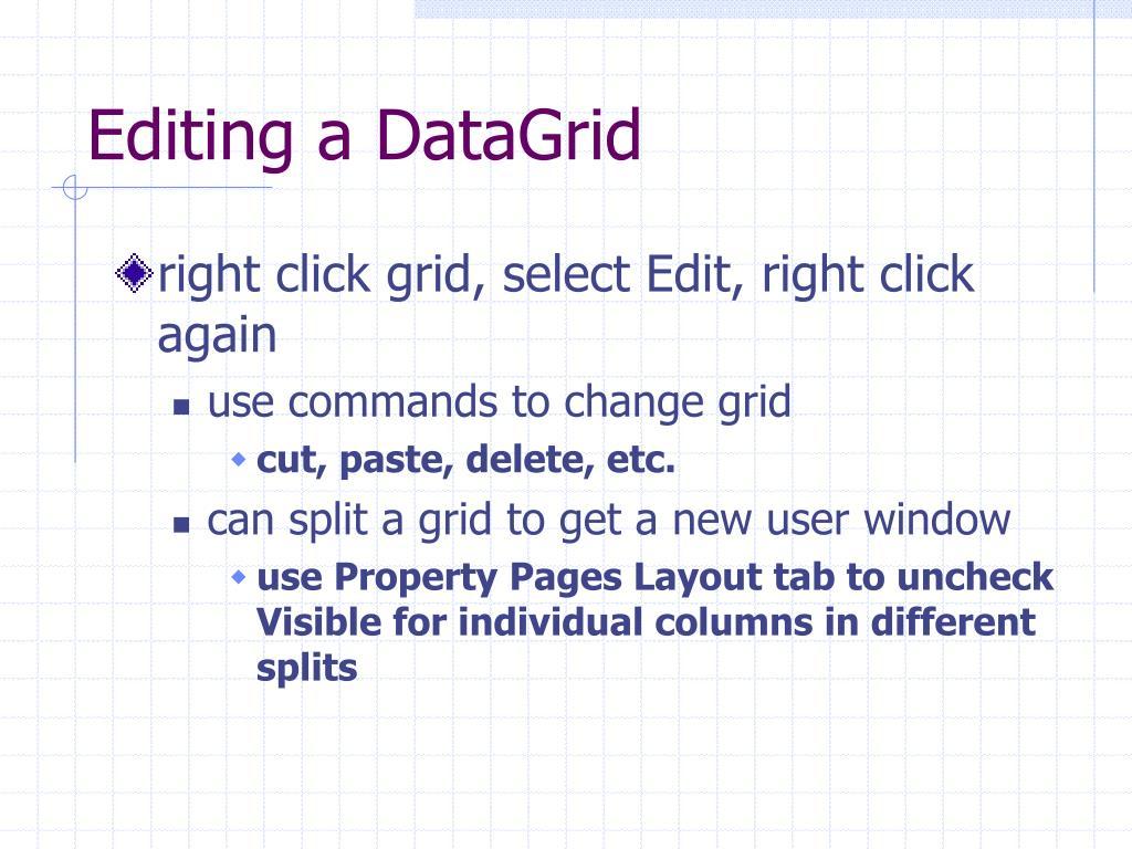 Editing a DataGrid