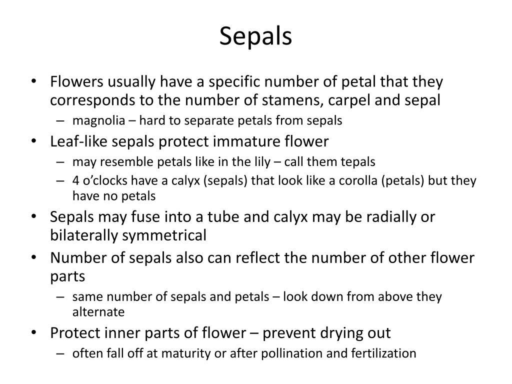 Sepals