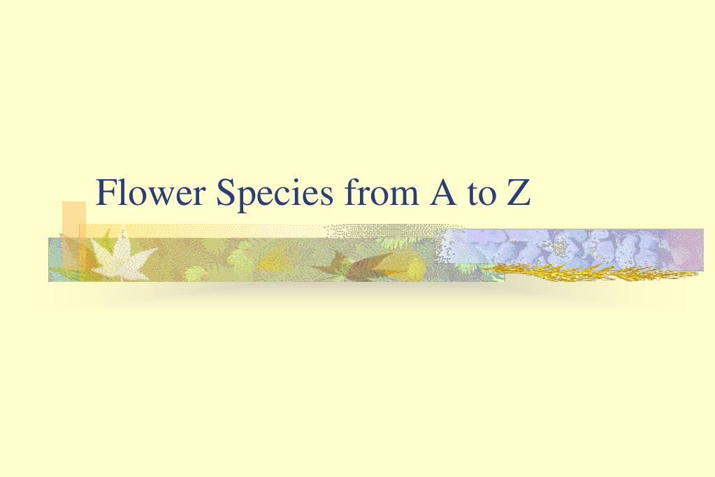 Flower Species from A to Z