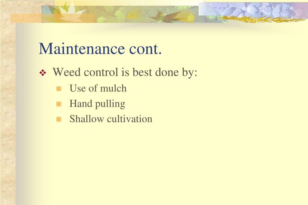 Maintenance cont.
