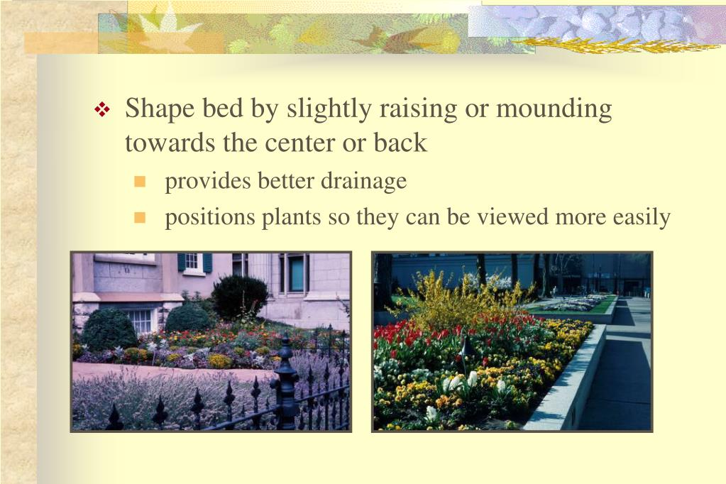 Shape bed by slightly raising or mounding towards the center or back