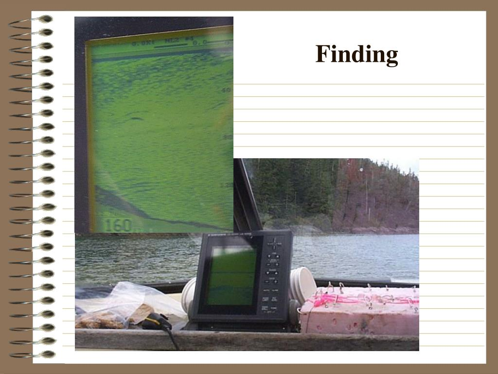 Finding