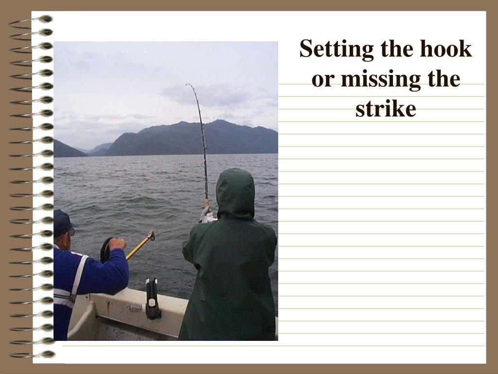 Setting the hook or missing the strike