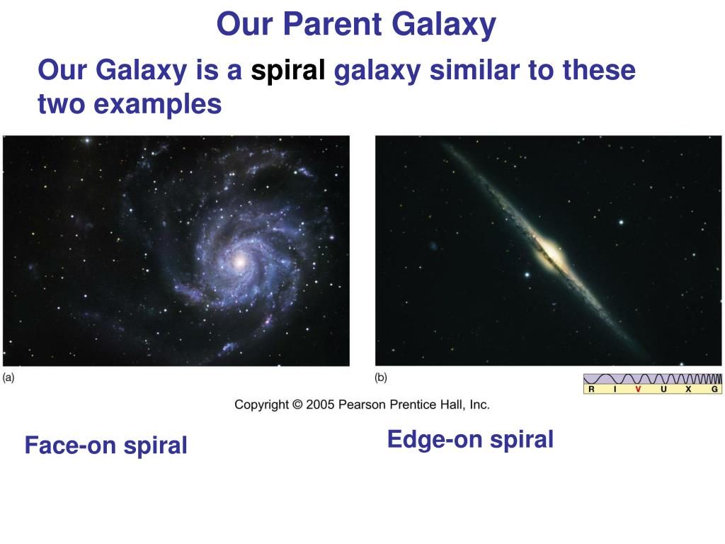 Our Parent Galaxy