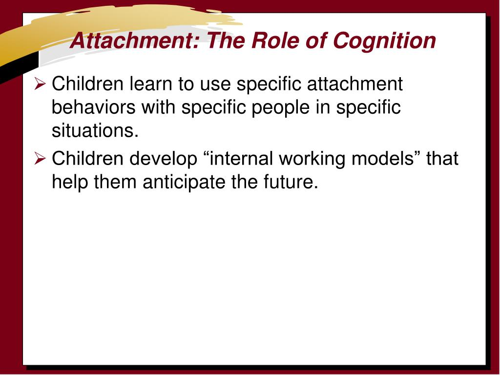 Attachment: The Role of Cognition