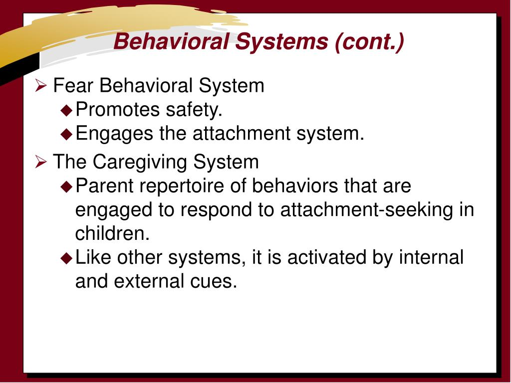 Behavioral Systems (cont.)