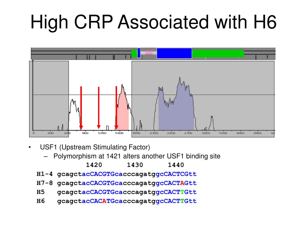 High CRP Associated with H6
