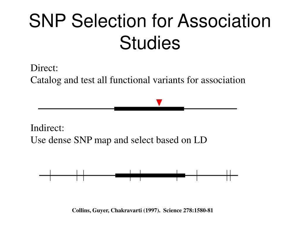 SNP Selection for Association Studies