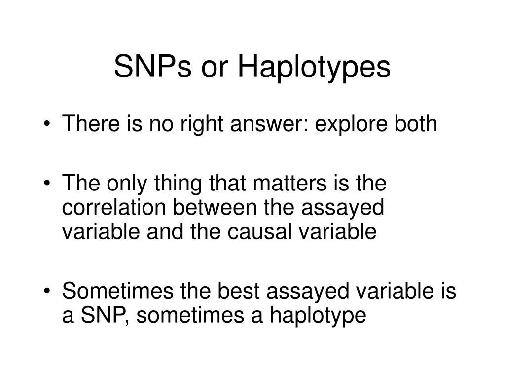 SNPs or Haplotypes