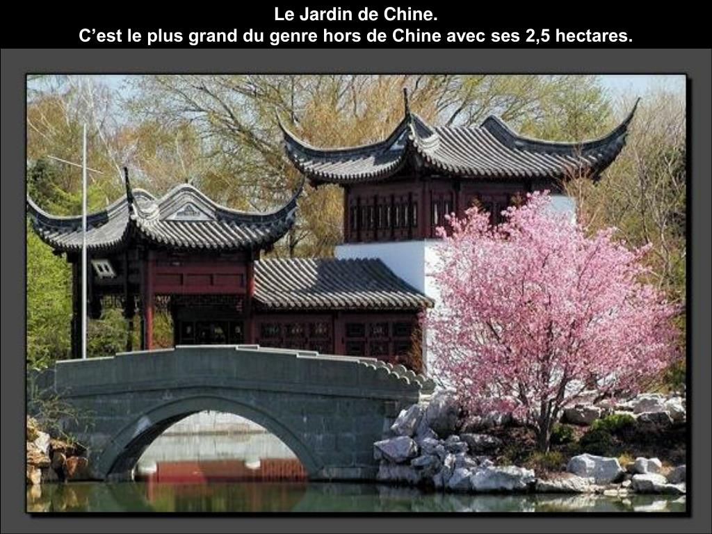 Le Jardin de Chine.