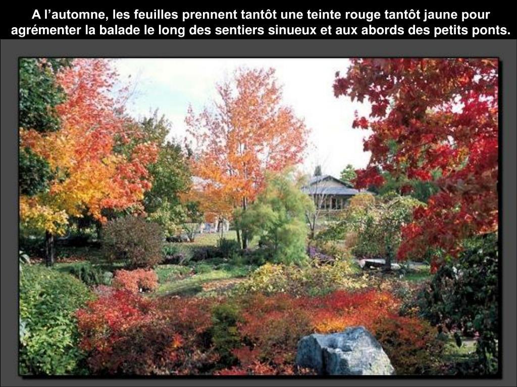 A l'automne, les feuilles prennent tantôt une teinte rouge tantôt jaune pour agrémenter la balade le long des sentiers sinueux et aux abords des petits ponts.