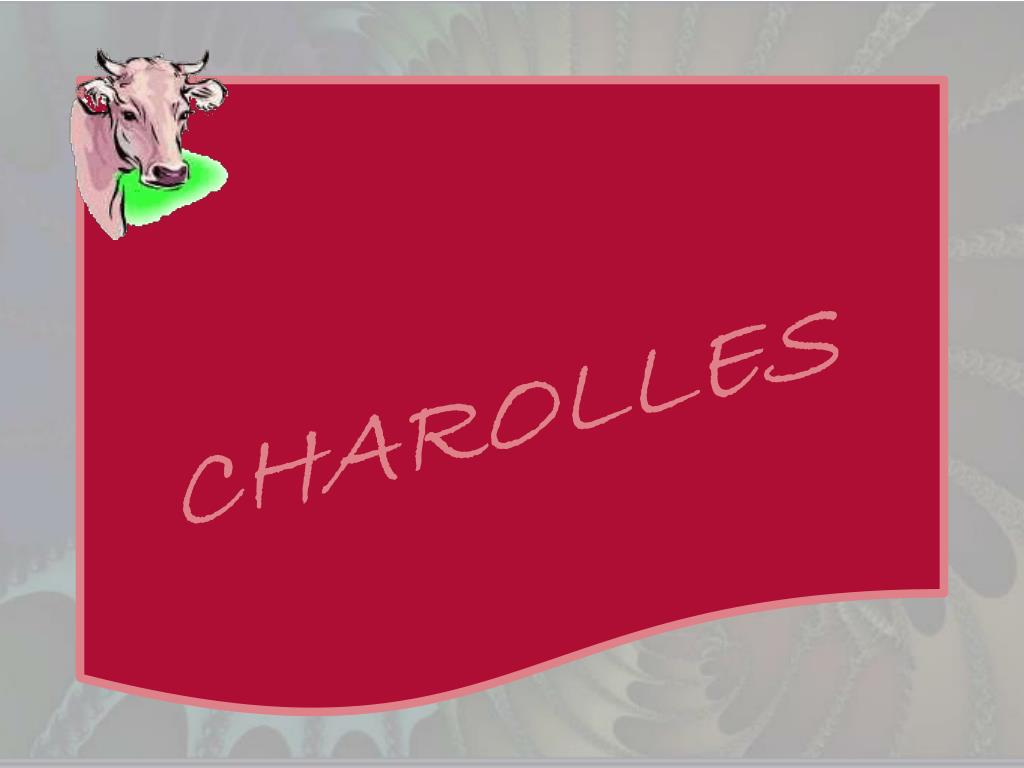 CHAROLLES