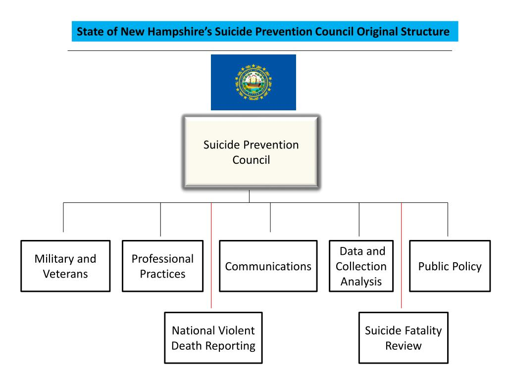 State of New Hampshire's Suicide Prevention Council Original Structure