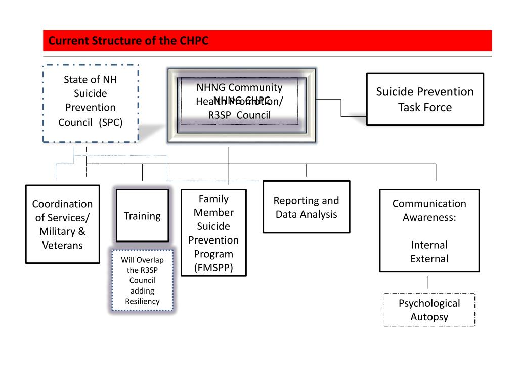 Current Structure of the CHPC