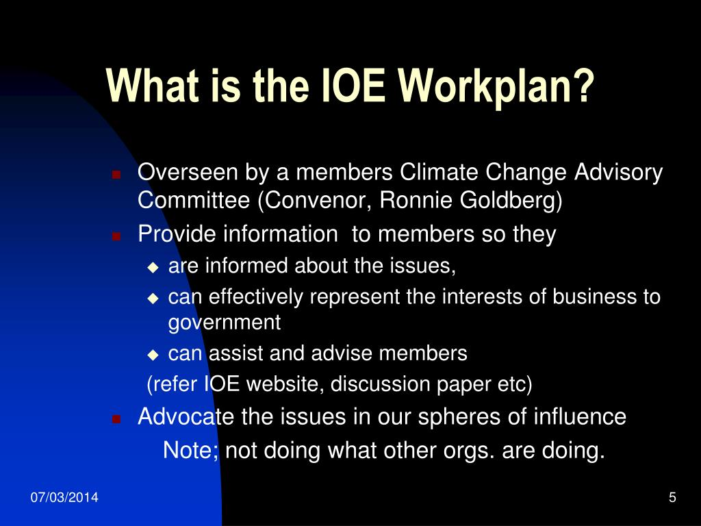 What is the IOE Workplan?