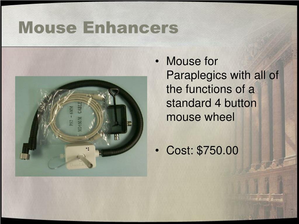 Mouse Enhancers