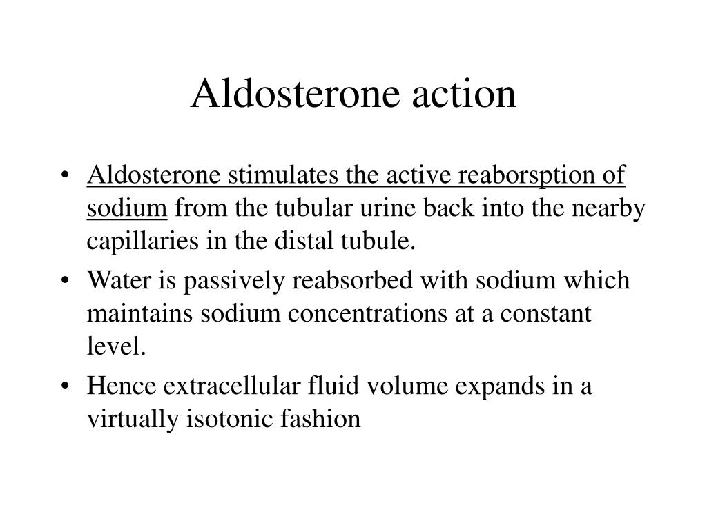 Aldosterone action
