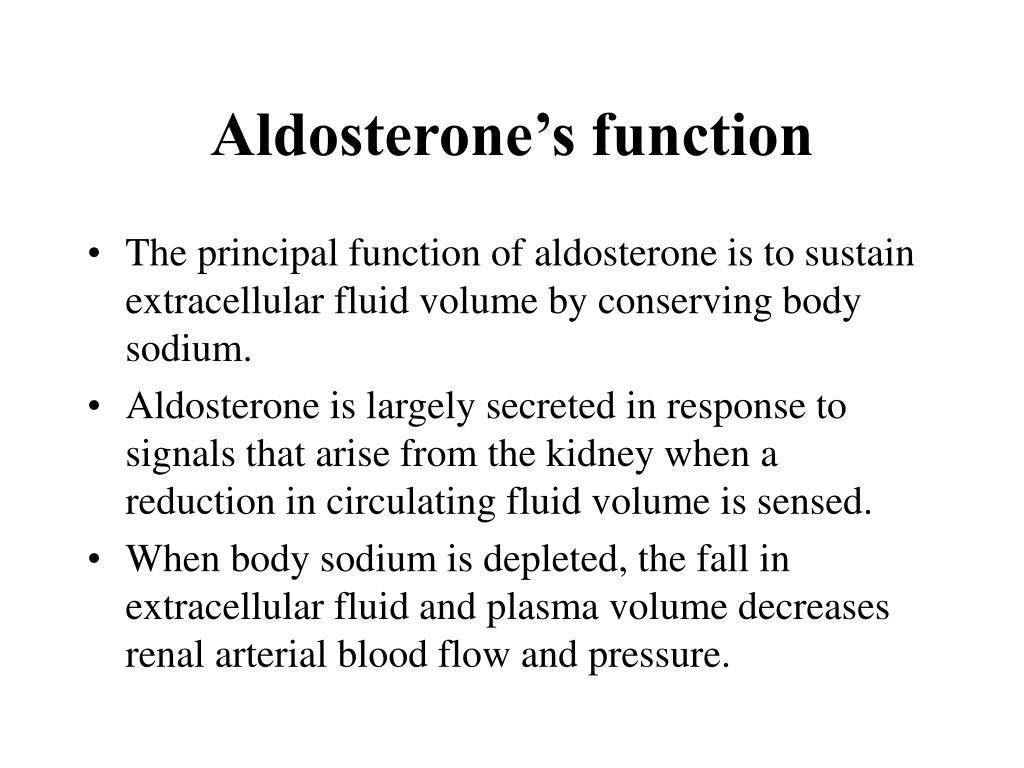 Aldosterone's function