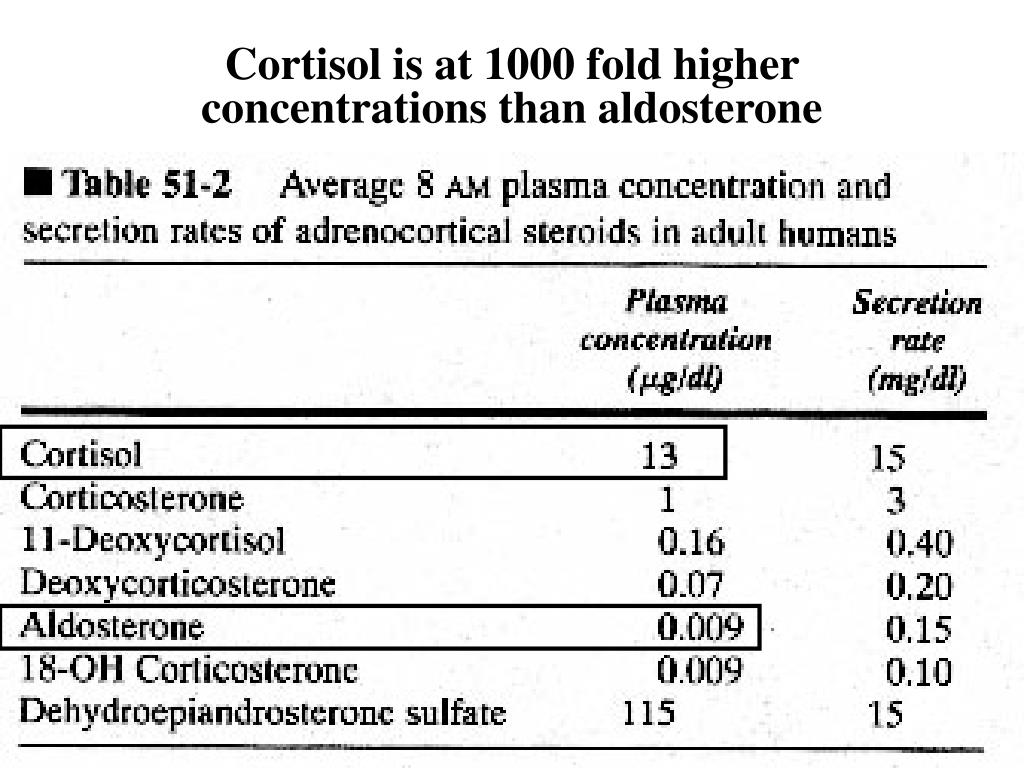 Cortisol is at 1000 fold higher concentrations than aldosterone