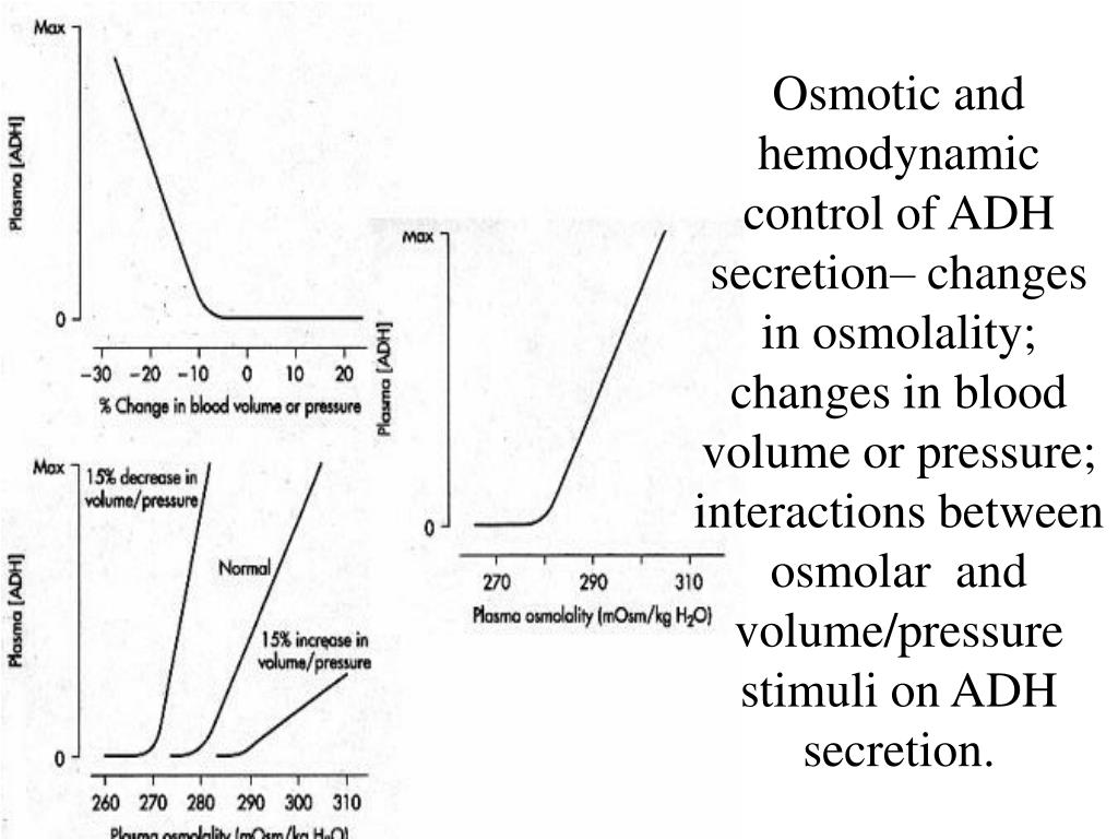 Osmotic and hemodynamic control of ADH secretion– changes in osmolality; changes in blood volume or pressure; interactions between osmolar  and volume/pressure stimuli on ADH secretion.